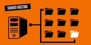 shared hosting - falconhive